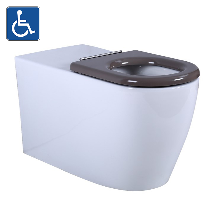 Toilet Asta Wall Faced Pan AS106WFP