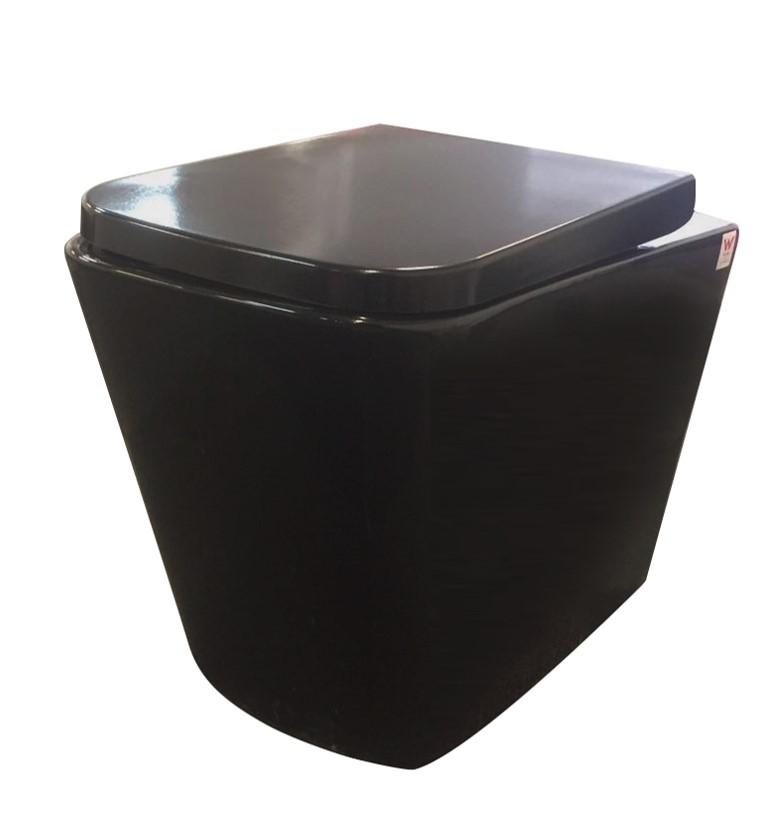Toilet Qubist Black Wall Faced Pan QB103WFPB